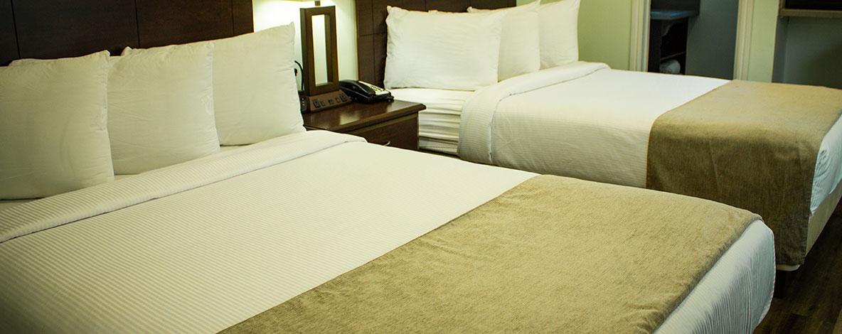 Accommodations at Travelodge Palo Alto, California